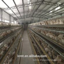 Cage de poulet de couche spéciale de l'équipement entièrement automatique de certification d'OIN
