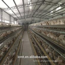 Certificação ISO equipamento totalmente automático especial camada de gaiola de galinha