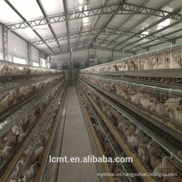 Certificación ISO equipo completamente automático capa especial jaula de pollo