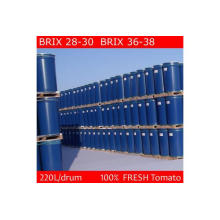 Tomate Paste Trommel Verpackung Konzentration 36-38% CB / Hb (Chalkis Marke)