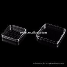 quadratische Einweg-Petrischale 130x130mm