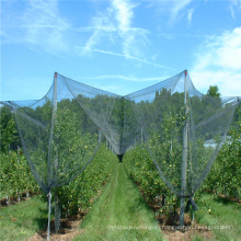 Новый дизайн сетки-плетение окликом для оптовых продаж
