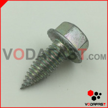 Hex Flange Head Triangle Thread Screw