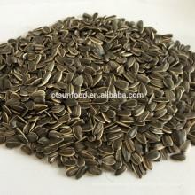 chinese sunflower seeds hulled sunflower seeds sunflower seeds market price