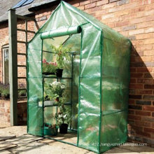 Walkin Flower Greenhouse Mini Greenhouse
