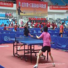 Plancher de sports d'intérieur de PVC avec la norme d'Ittf utilisée pour des cours de tennis de table