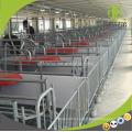 Conception de caisse de mise bas Mise en plumes des équipements de ferme de porc