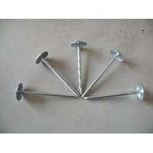 Galvanized Roofing Nail / Roofing Nails Manufacturers in China