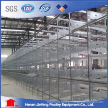 Type de H Poulets Cage de volaille cage d'équipement pour la ferme (JFW-08)