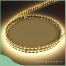 110V 220V Colorful PVC LED Strip Rope Light
