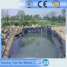 HDPE Geomembrane in Cheap Price Good Price