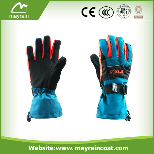 Ski Gloves Wholesale Gloves
