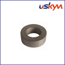 Sm2co17 Ring Rare Earth Magnets (R-002)