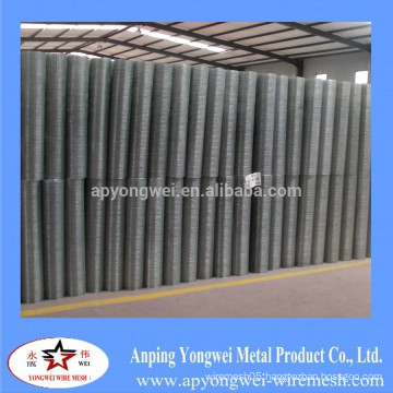 Anping galvanized wire mesh