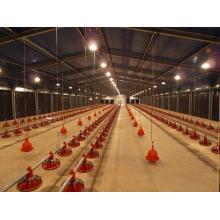 Haus + Ausrüstung für Hühnerfarm (PCH-7)