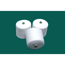 Spun Polyester Yarn for Sewing Thread (60s/2)