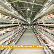 Precio bajo de alta calidad China suministra 4 capas de jaulas de cría de aves de corral
