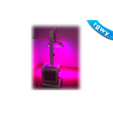 Multifunctional Therapeutic Led Photo Rejuvenation With Blue And Red Light