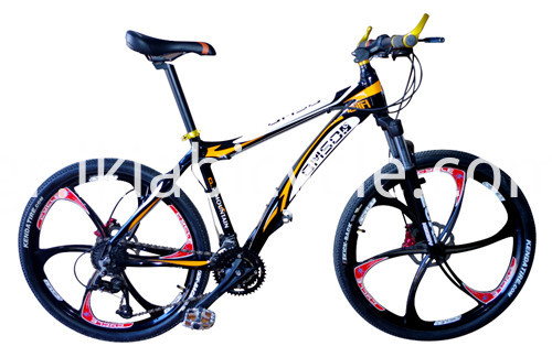 Steel Frame Mountain Bicycle