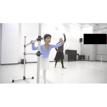 Gym Fitness Equipment Ballet Barre
