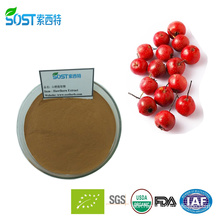 China Manufacturer Best Selling Products Hawthorn Flavone