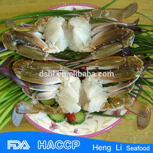 Hot sale spotted crab with Fishing Certificate