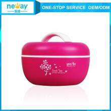 Heißer Verkauf Apple Cute Pastice Doppelschichten Lunchbox für Kinder