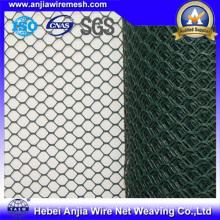 Шестигранная проволочная сетка - горячее погружение или электрооцинкованное или ПВХ покрытие