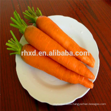 Quality cheap fresh carrots for sale