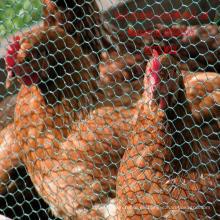 Malla de alambre de pollo Malla de pollo hecha en la fábrica de China