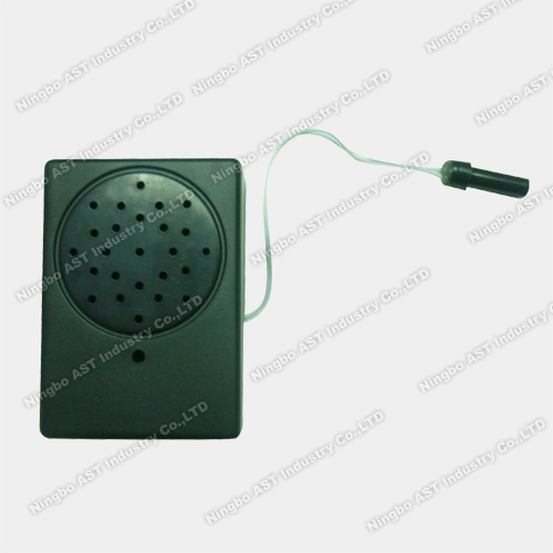 Verlichting Sensor Talking Box, lichtsensor Voice Module