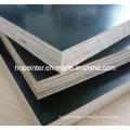 Phenolic Glue Water-Proof Plywood Poplar Core Black Film