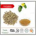 Großhandel Fabrik Versorgung 100% Natürliche Tribulus Terrestris Extrakt Pulver Saponins 90% Protodioscin 40%