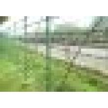 12 # Alambre de púas / 14 # Esgrima de alambre de púas con menor precio
