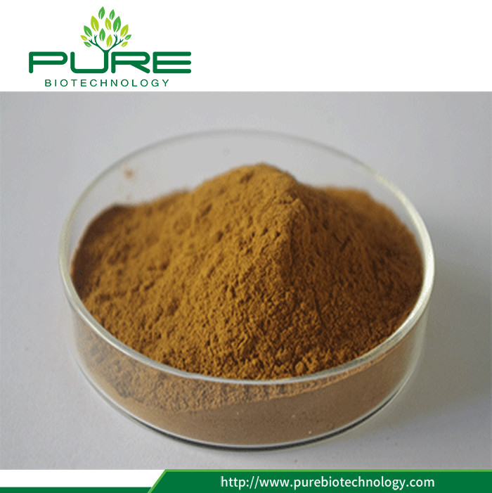 High Quality Pure Nature Cassia Seed Extract (4)