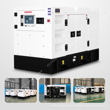 Générateur d'aimant permanent silencieux de 40 kilowatts avec le moteur 1003TG d'amour