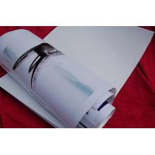 pp synthetisches Papier für Bannerständer