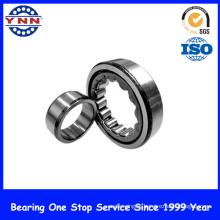 Fornecedor de China e rolamento de rolo cilíndrico de alta velocidade (NU 213)