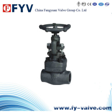 ANSI Forged Steel Gate Globe Check Valve