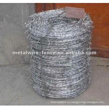 Alambre de púas doble galvanizado caliente-sumergido (fabricante)