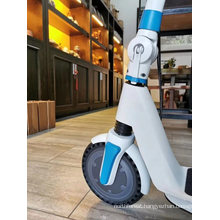 PRO Battery Citycoco Snow Gas Motor Electronic Water Vespa Petrol Folding Mobility Scooter