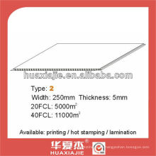 250mm*5mm PVC wall&ceiling panel