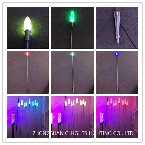 G-Light reed light