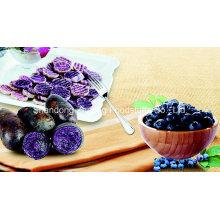 Top Quality Purple Sweet Potato