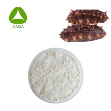 Seegurken-Extrakt-Pulver 15% Protein 20% Polysaccharid