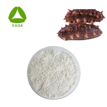 Extrato de pepino do mar em pó 15% proteína 20% polissacarídeo