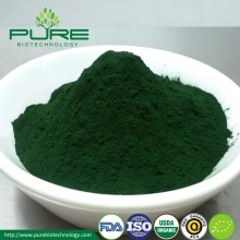Jual Hot Chlorella Powder / Organik Chlorella Powder