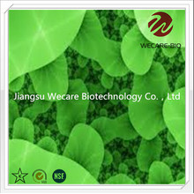 Bifidobacterium Infantis Freeze Drying Powder
