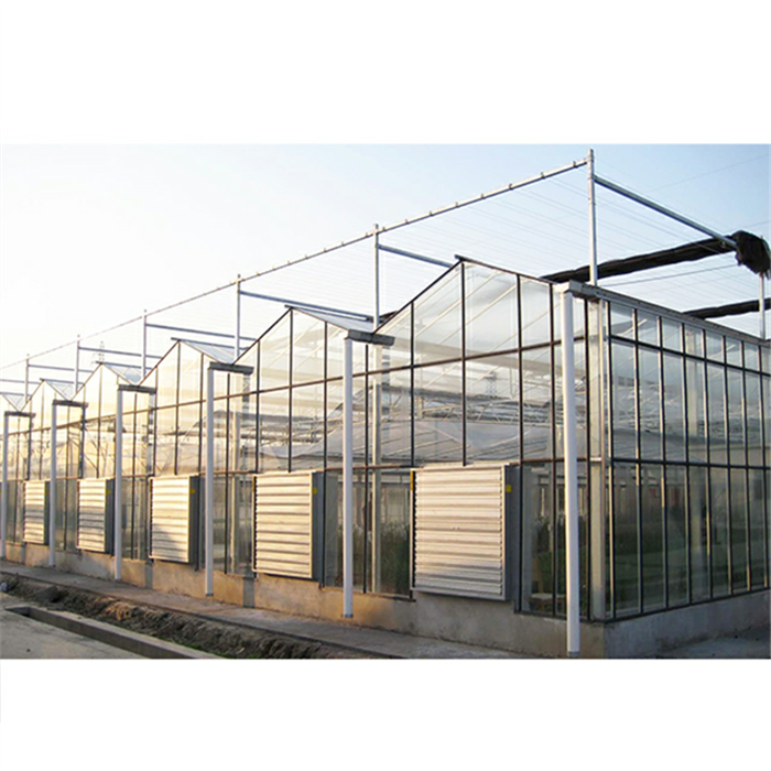 Agricultural Large Venlo Glass Flower Greenhouse