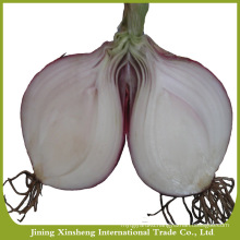 2016 new season good quality fresh red onion